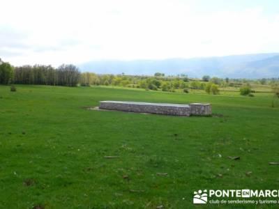 Ruta de Senderismo - Altos del Hontanar; tren a navacerrada